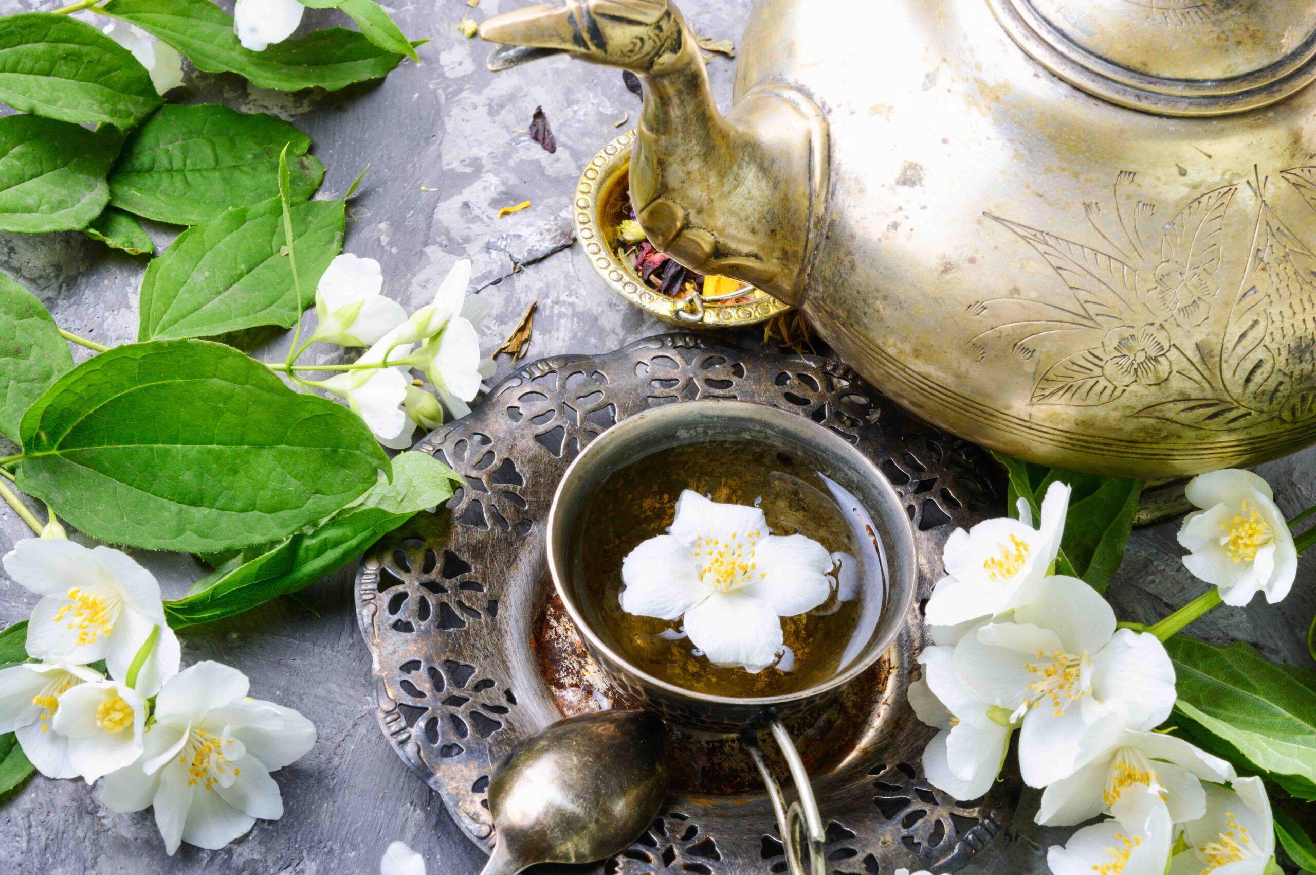 Plantas medicinales jazmin